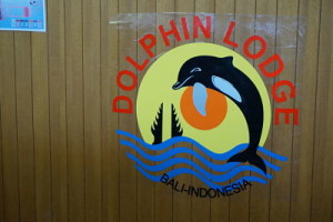 dolphin lodge